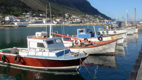 Kalk Bay Harbor Fishing Boats